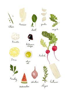 [일러스트] 요리재료 : 네이버 블로그 Illustration Chohye Kim