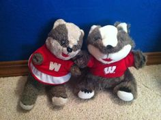 Badger friends