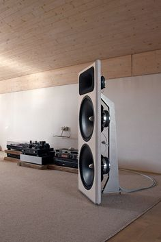 OZ speaker. Acoustic Elegance 15s in open baffle.