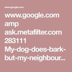 www.google.com amp ask.metafilter.com 283111 My-dog-does-bark-but-my-neighbour-is-an-asshole amp