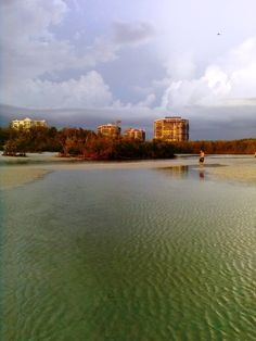 Clam Pass, Naples Florida.... One of my favorite places in Pelican Bay