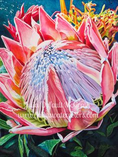 Maui Treasure by Julia Dufault McGrath Watercolor ~ 24 inches x 18 inches Protea Art, Protea Flower, Watercolor Flowers, Watercolor Paintings, Paint Flowers, Watercolours, King Art, Botanical Illustration, Beautiful Flowers
