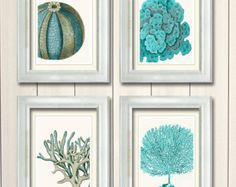 Set of 4 Blue Coral & Sea Urchin Prints
