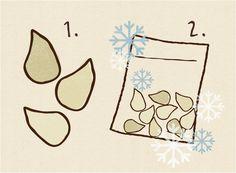 にんにくを一粒ずつむいて個別に冷凍しましょう
