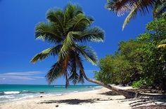 Corcega Beach in Rincon , Puerto Rico