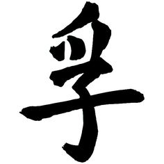 Chinese Symbol s Chinese Character Truth Vinyl Decal Sticker