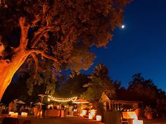 Amber wedding lighting by Love in the Mix, San Francisco Bay Area.