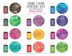 Everyday Oils From Young Living Essential Oils - Perfect for all your family needs | TheConfidentMom.com