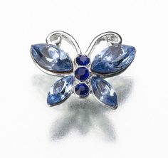 This elegant blue butterfly pin will give you that touch of something blue you are looking for. The pin is the shape of a butterfly, and contains blue crystals. The bride can pin it in her hair or even to her garter! Butterfly Wedding Theme, Wedding Symbols, Lillian Rose, Butterfly Pin, Wedding Pins, Blue Wedding, Wedding Stuff, Dream Wedding, Wedding Themes