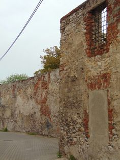 Zamek. Strzelce Opolskie. photo by Joanna Kaczmarek