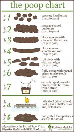 Poop Chart!