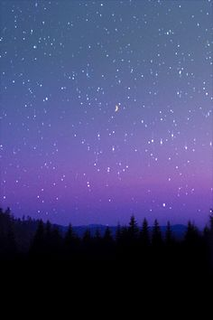 Look at the stars . . . look how they shine for you