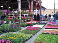 Detroit Eastern Market. Oh how I miss this.