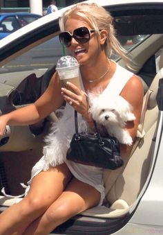 pooch love + starbucks & we will have a good day ok :)