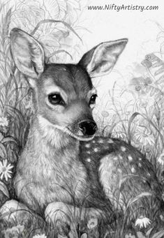 Pencil Drawings Of Animals, Animal Sketches, Deer Drawing, Painting & Drawing, Art Drawings Sketches Simple, Cute Drawings, Deer Sketch, Afrique Art, Deer Art
