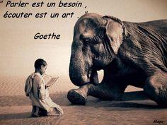 Goethe  Maya47000
