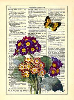 The Primrose Bloom and Butterfly Antique Book Art by StayGoldMedia, $6.99