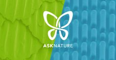 Ask Nature - it only has 3.8 billion years of experience