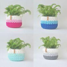 Brincando com degradê #chadas2 #croche #crochet #ganchillo #fioecologico #fiodemalha #tshirtyarn #trapillo #cachepo #cachepot #plantinha #degrade #handmade #feitoamao