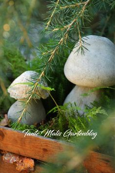 DIY * – mushrooms made of concrete instructions - DIY Crafts Concrete Cement, Concrete Projects, Porcini Mushrooms, Stuffed Mushrooms, Memorial Day Sales, Cool Landscapes, Fall Diy, Diy Garden Decor, Garden Sculpture