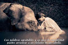 La fuerza de la amabilidad...