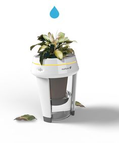 Energy efficiency is synonymous with eco-friendliness, living green, and saving the planet. Nuture is a living energy monitor that embodies this idea with a
