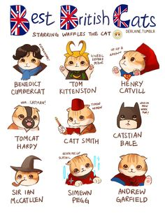 Best British Cats - Trying to draw more art of my cat Waffles