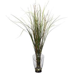Nearly Natural Grass & Bamboo w/Large Jar Silk Plant (5.880 RUB) ❤ liked on Polyvore featuring home, home decor, floral decor, flowers, backgrounds, filler, plants, bamboo silk plant, flower bouquet and flower home decor