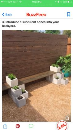 Easy DIY Succulent Bench Using Cinder Blocks And Stained Wood. Cheap And  Quick Backyard Garden Project For Beginners.