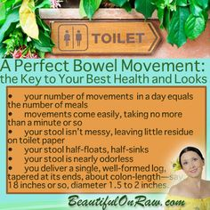 Perfect Bowel Movement ... measure your health upgrade progress by what comes out the other end :)