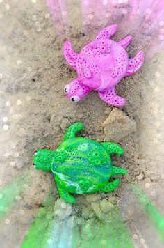 Rosa Turtle & Green Turtle 5€