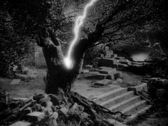 The lightning that strikes the tree at its root. Foreshadows something is going to go wrong between Jane and Rochester.