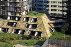 Prague's newest eco building and its impressive green roof