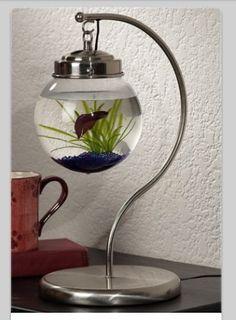 Cool hanging fish bowl