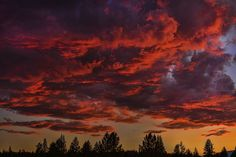 WHEN SKY IS LIT by Sam Okamoto - Landscapes Cloud Formations ( sierra nevada, ca, sunset, northern california, truckee, forest, coulds formation, burning sky )