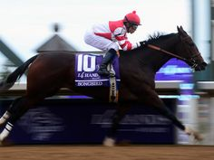 Songbird ridden by Mike Smith wins the Breeders' Cup Juvenile Fillies