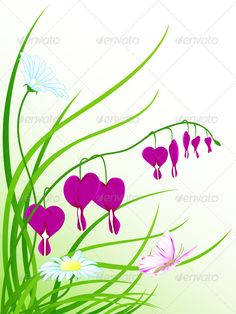 Green Grass, Flowers and Butterfly
