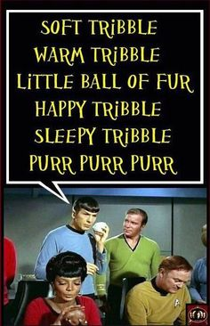 the Trouble with Tribbles - one of the best star Trek episdodes ever.Big Bang & Star Trek best of both worlds♡♡♡ Big Bang Theory, Star Trek Tos, Star Wars, Geek Out, Bigbang, Batgirl, In This World, I Laughed, Memes