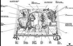 125cc Wiring Diagram together with 39054721743359418 together with Harley Davidson Pocket Bike Wiring Diagram further Bsa Chopper Wiring Diagram additionally Honda Air Cooled Engine. on pocket bike wiring harness diagram