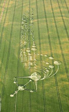 Señales? Coordenadas? Diseños en Campo de maíz, más conocido como Crop Circles. #Alien #FallenAngel #Noahdays #UFO #OVNI