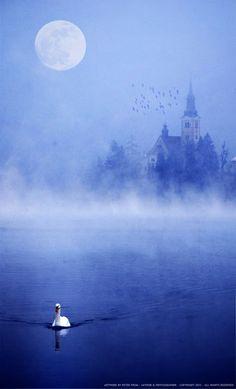 ★ Brilliant Blue ★ Swan Fantasy