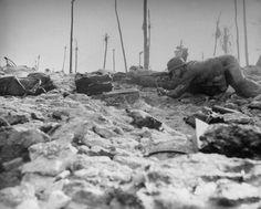 """Crawling over fallen palm log, a Marine advances up slope of beach to throw grenade at pillbox. Littered equipment was left by men who ran up the beach at first, were then forced to crawl backward into the surf to escape raking fire from pillbox. Palm trees in background have been shorn of leaves by bombardment. Marine . . . illustrates how so many men are wounded in buttocks in modern war."""""""