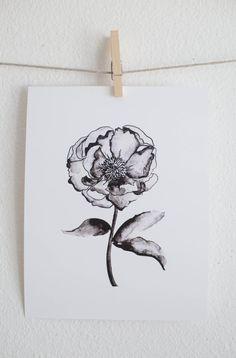 VENTA - flor de la peonía en escala de grises - impresión Floral acuarela - 8 x 10