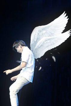 Vương Tuấn Khải. Anh đẹp, đẹp   rất rất đẹp.  Anh - Một thiên thần, à ko một thiên thần gãy cánh ở lại trần gian - quyến rũ tôi. thôi miên tôi đến nỗi mỗi khi nhìn thấy anh tôi như một con ngốc, đầu óc chỉ còn đúng một cái tên Karry Wang. Tôi yêu anh, si mê anh .. Và mãi mãi chỉ yêu mk anh thôi! P/S: Dù sau này cả thế giới này quay lưng lại vs anh thì anh đừng lo tôi vẫn luôn thích, luôn bảo vệ và ủng hộ anh mà!