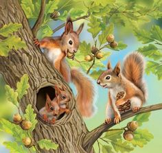 All animated gifs Forest Animals, Woodland Animals, Animal Paintings, Animal Drawings, Animals And Pets, Cute Animals, Squirrel Pictures, Squirrel Art, Mosaic Crafts