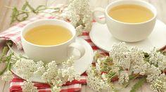 Léčivý smrkový sirup z mladých výhonků proti kašli i rýmě Korn, Herbalism, Tea Cups, Herbs, Tableware, Health, Ethnic Recipes, Decor, Herbal Medicine