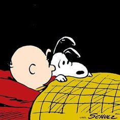 """Did you hear that!"", a scared Snoopy has to sleep with Charlie Brown. Charlie Brown Characters, Peanuts Characters, Cartoon Characters, Peanuts Cartoon, Peanuts Snoopy, Snoopy Love, Snoopy And Woodstock, Happy Week End, Charlie Brown And Snoopy"