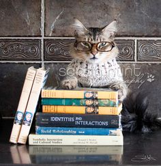 Oliver loves to role play and wear different outfits. Here he is as a librarian, looking very studious with his books and very stylish smarticles. No photoshop was used in this photo! $19.99 on Etsy