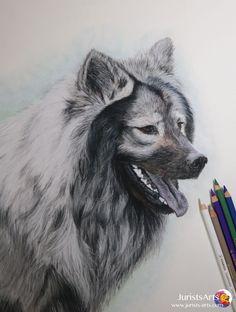 Dog: Eurasier  Pastell: Stabilo Carbothello