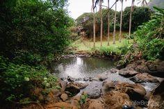 Oahu Hikes, Easy Hikes on Oahu, Hawaii. Photographer at Disney Aulani, Turtle Bay Resort Beach Portraits, Waikiki Photo Shoots, Things to Do on Oahu, Easy Nature Hikes with Kids www.jenniferbrotchie.com